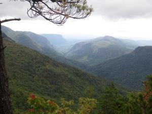 The Stroupie Cabin - Jonas Ridge Fall 2014 015
